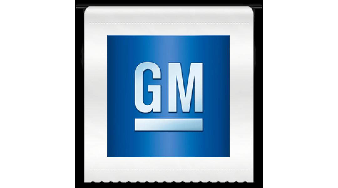 General Motors GMIO  2019